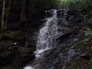 While hiking gorgeous water features make themselves known loudly and clearly around the Saluda area.