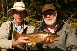 My first Maryland Brown Trout-yes it was released!!!