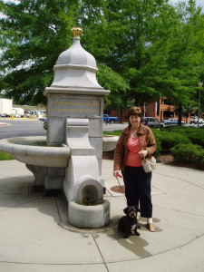 Roanoke people and pet fountain!!