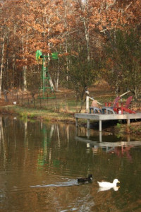 My pond in TN. and our windmill