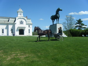 VT. horse business! Gorgeous!