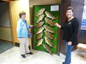 The display at the welcome Center shows various types of bass that are found in the TN. and Lake Pickwick.