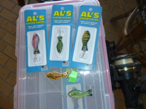 My favorite lures! Al's Goldfish and their new Living Lures are hooking and holding our backyard neighbors.