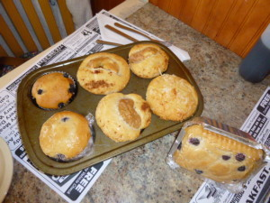 Muffins non pariel (no peer) with coconut, apple, blueberries, etc.