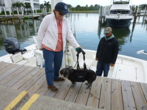 Bringing Terry aboard using a neat harness that supported his weight perfectly!